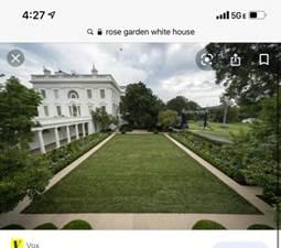 Kan een afbeelding zijn van boom en gras